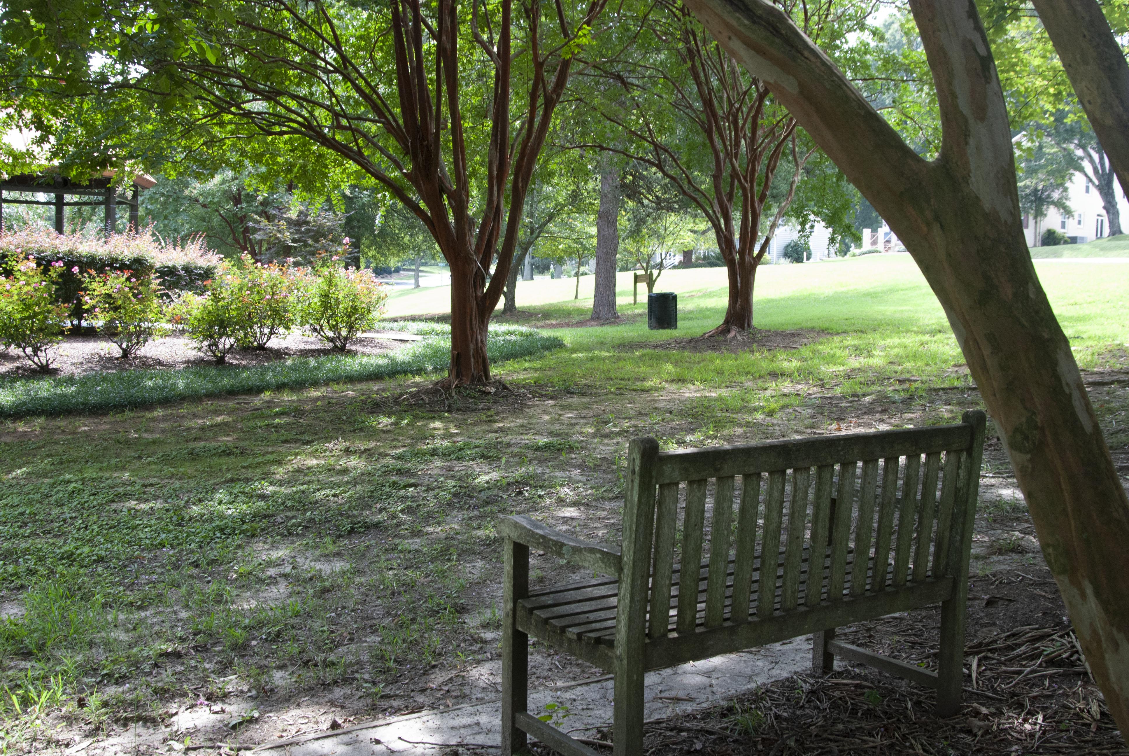 Willowbrook Park anticipates transformation with new arboretum
